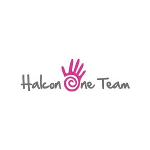 Halcon One Team