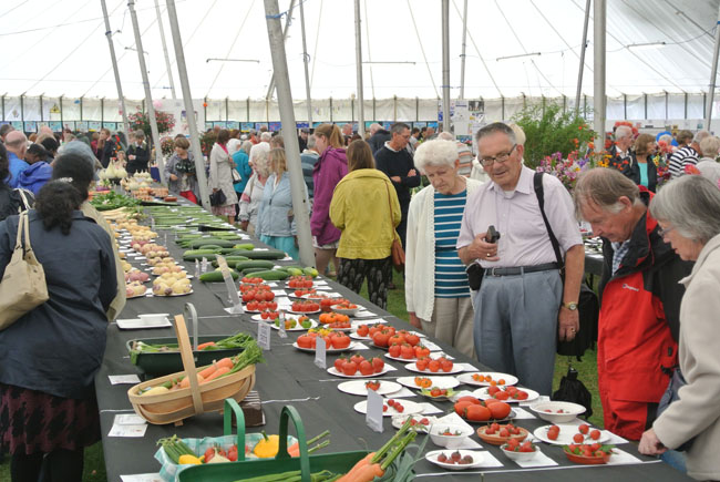 Rows of vegetables and fruit on the competiton tables at Taunton Flower Show